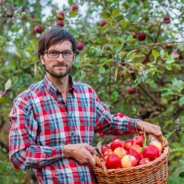 Un homme dans un verger avec un panier de pommes